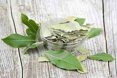 foglie-della-baia-dell-alloro-40991962