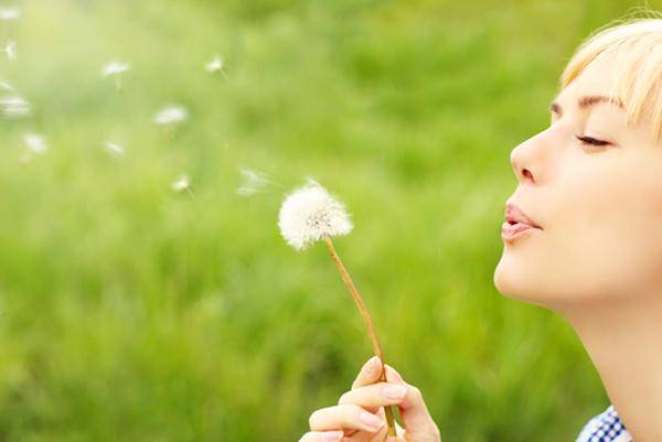 Basta allergia.. antistaminici chimici e cortisone …. la soluzione con tre piante….Boswellia, Eucalipto,Aloe arborescens.