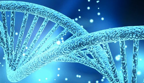 QUANDO SOTTOPORSI AI TESTS GENETICI